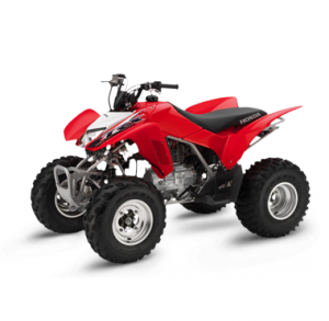 We buy Honda TRX 250 X