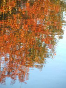 water-fall-1562216
